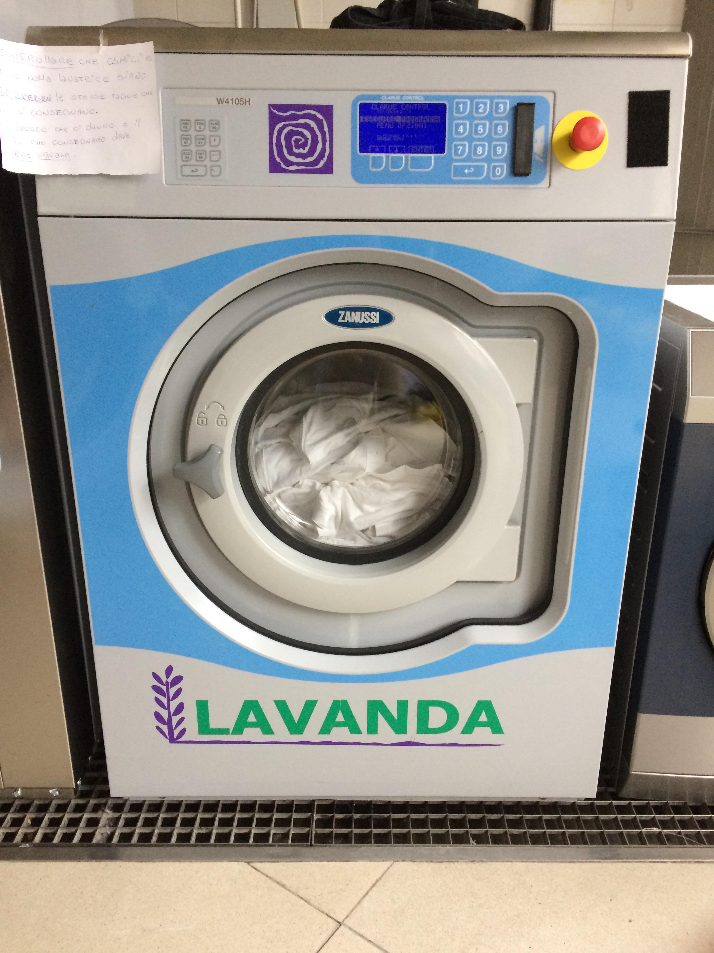 EtaBetaで働きのこ 洗濯 LAVANDA – 東京ソテリア
